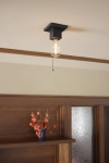 Frank Lloyd Wright Ceiling Light