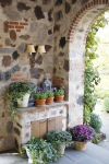 Potted plants in garden home